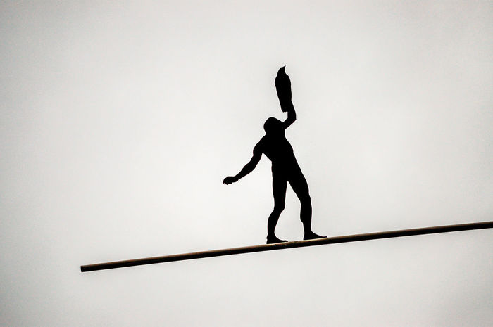 man&eagle Eagle Balance Balance Act Day Man And Birds One Person Outdoors Real People Silhouette