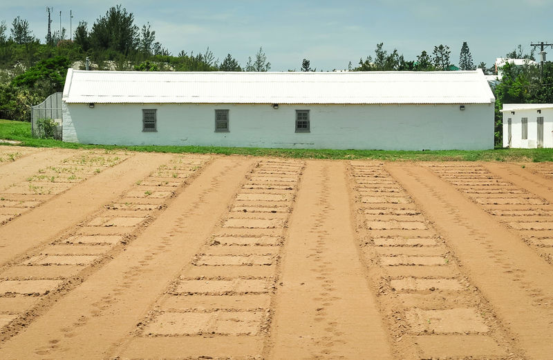 Small farm near