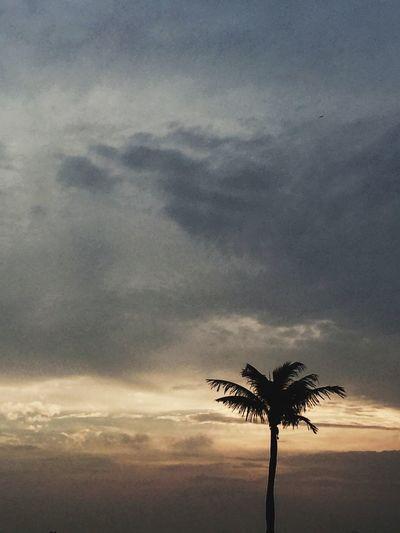 Ipanema Rio De Janeiro Sunset Vscocam VSCO Walking Around Sunset Silhouettes