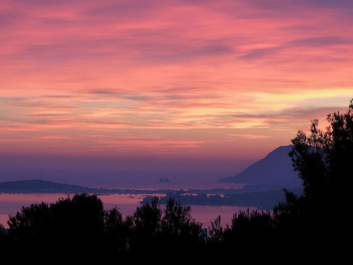 Pretty sunset, pretty people Sunset Pretty Colours Toulon Gradient Sky Sea France Beauty In Nature Scenics - Nature Tranquil Scene Tranquility Silhouette Tree Cloud - Sky Orange Color Plant Water Nature No People Mountain Idyllic Non-urban Scene Outdoors Dramatic Sky Romantic Sky Purple