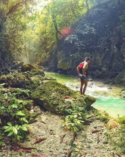 Water Sunlight Leisure Activity Nature Tree Outdoors Canyoneering Naturelover Nature Photography Naturephotography Naturecollection Intothewild Into The Nature Forest Life Waterfall Waterfalls Adventure Lifestyles High Angle View Beauty In Nature Landscape Traveldiary Menofoutdoors Scenics