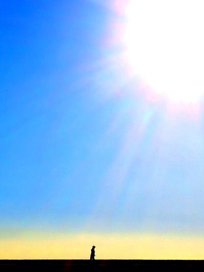 Dazzling Silhouette Sky Sun