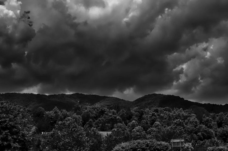 Clouds Dark Nature Trees Mountains Sky B&w