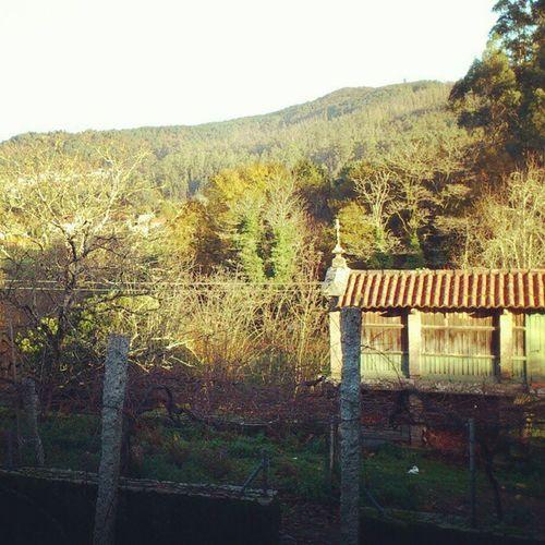 #sempreengaliza #galiciacanibal #galiza #omonte #verde #maisverde #requeteverde #instagrille #instagram #comidita Verde Galiciacanibal Maisverde Instagrille Requeteverde Comidita Sempreengaliza Omonte Galiza Instagram