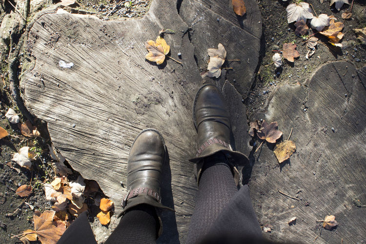 Shoe High Angle View Low Section Day Human Leg Personal Perspective Outdoors Nature Real People Human Body Part Body Part One Person Leaf Wood - Material Human Foot Leaves Sunlight Tree Tree Trunk Trunk Cut
