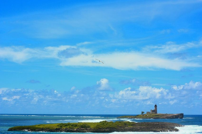 wander... the features of an historical spot that witnessed Napoleon's unique Naval battle victory. Lighthouse Isle Island Phaethontidae Tropic Bird Travel Mascareignes Summer Days Oceanside Coral Formation Sea Beach Water Outdoors Horizon Over Water Day Blue Cloud - Sky Bird Sky Travel Destinations No People Wave Scenics Vacations The Great Outdoors - 2018 EyeEm Awards