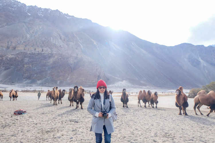 Woman standing in desert against animals and mountains