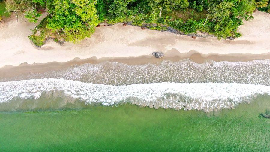 Beach Day Sea