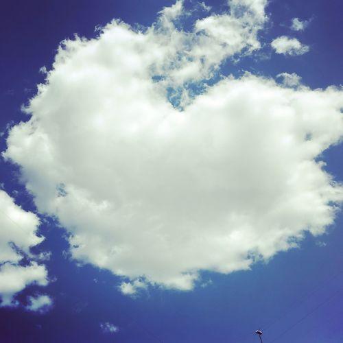 И чем больше чудес вокруг вы замечаете, тем чаще и крупнее они становятся Cloud - Sky Sky Beauty In Nature Low Angle View Nature No People Scenics - Nature Sunlight Backgrounds Tree Cloudscape Plant White Color Blue Outdoors Day Meteorology Tranquility Tranquil Scene Idyllic