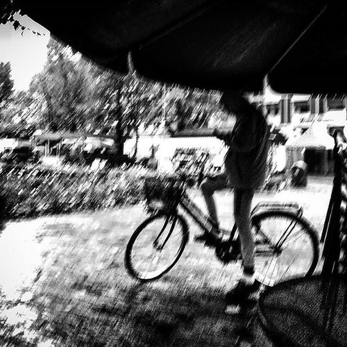 Piove senti come piove senti come viene giù Rainfromwindow Umbrrella Igrain Bycicle Undertherain Rain Loves_united_asti Bnwitalian  Soup Excellent_bnw Ig_worldbnw Vivobnw Ig_biancoenero _world_in_bw Dsb_noir Eranoir Bnwitalian  Excellent_bnw Ig_worldbnw Igclub_bnw Loves_noir Igs_bnw Ig_contrast_bnw Master_in_bnw  Top_bnw tv_pointofview_bnw ig_asti_ world_bwn