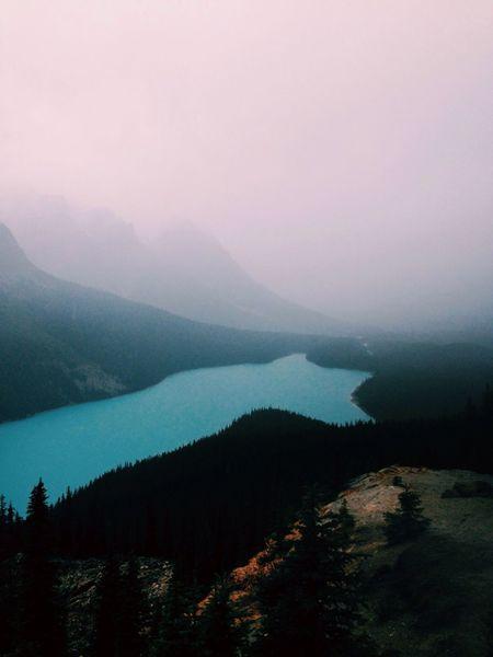 Peyto Lake, Banff Canada Peyto Lake Banff  Nature Lake Travel North America Alone Hiking