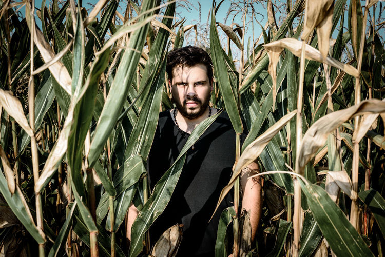 Coming for you Cinematic Adults Only Agriculture Cereal Plant Crop  Day Field Front View Grass Growth Headshot Maze Nature One Man Only One Person Outdoors Plant Portrait Real People Rural Scene Standing Waist Up Young Adult Young Men This Is Masculinity