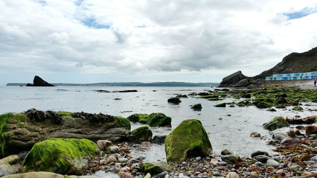Scenics Low Tide Beauty In Nature Travel Destinations Tranquility No People Vacations Sky Nature Horizon Over Water Landscape Water Sea Beach Cloud - Sky Outdoors Day Torquay Meadfoot Beach Devon UK