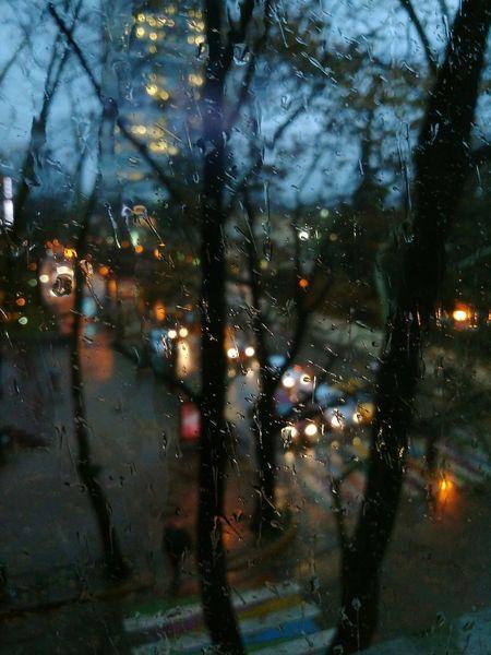 Rain Window Full Frame Wet Backgrounds Night Outdoors Nature Autumn Perspective Tree Urban Cityscape Landscape Motoz