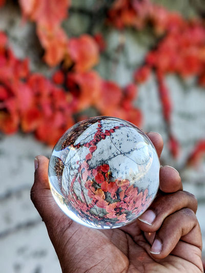 Close-up of hand holding crystal ball against autumn leaves