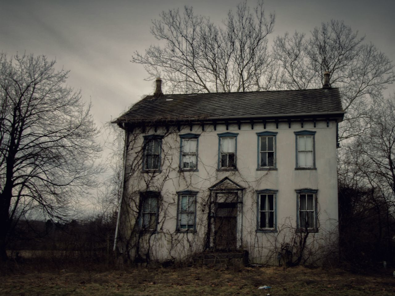 bare tree, tree, abandoned, sky, house, architecture, no people, building exterior, built structure, outdoors, branch, day, nature