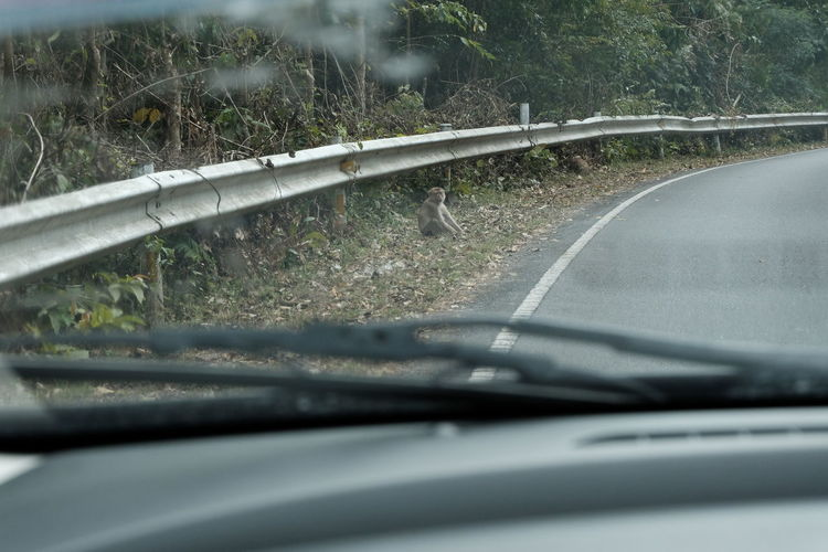 Close-up of car windshield on road