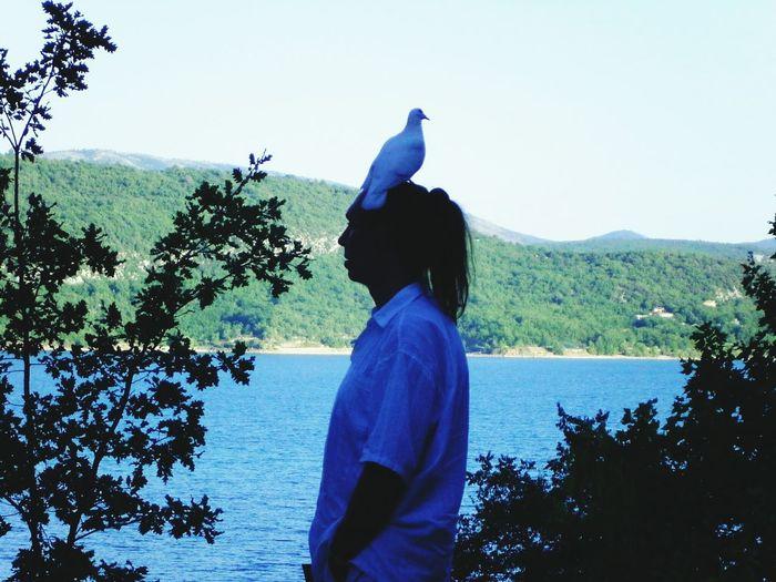 Avec ma colombe WiFi