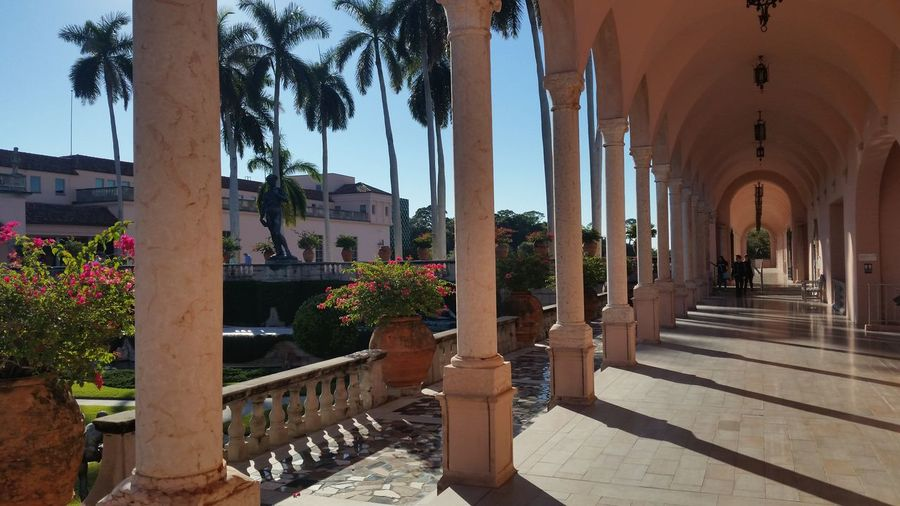 Ringling Museum Florida Sarasota Ringling EyeEm Selects City Architectural Column Flower Architecture Arch Historic Building Historic Archway Statue Visiting Sculpture