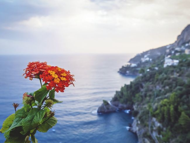 Amalfi coast, Italy (c) Julie Gatto Nature Travel Italy Amalfi Coast Wanderlust Sunset Sea And Sky Sea Travel Photography Aroundtheworld April Showcase The Great Outdoors With Adobe
