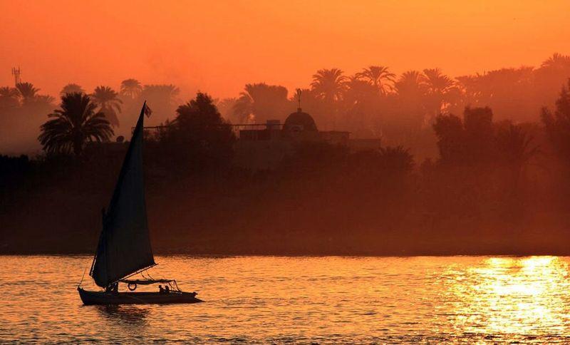 Silhouette Sunset Water Tree Lake Scenics Sky Nautical Vessel Outdoors No People Nature Nile River NILE VIEW Nile & Sky NileRiver