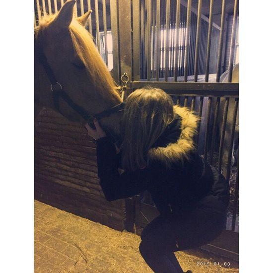 My Little Pony Pony LET ME KISS YOU Kisses