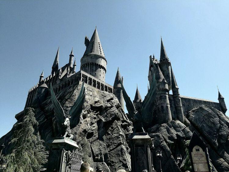 Harry Potter Jkrowling Butterbeer Hermoine WizardingworldofHarryPotter Wizard