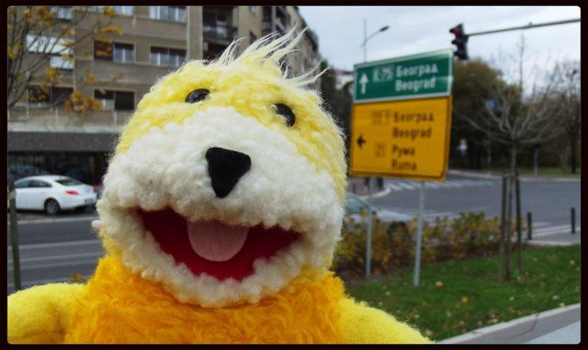 Flateric Flat Eric Novi Sad Selfie