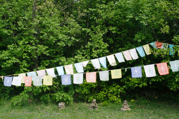 Praying flags hanging against trees