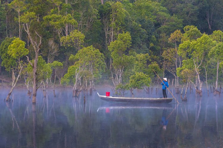 People in lake by trees in forest