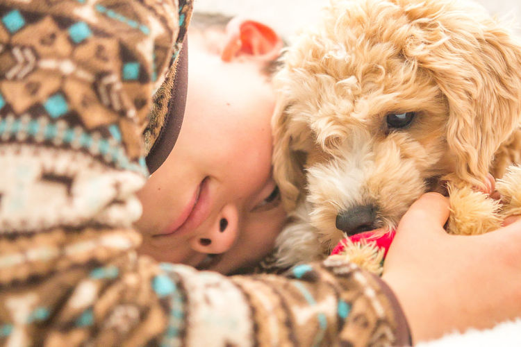 Close-up of boy with labradoodle puppy