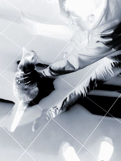 """""""Chat"""" dit-il. Cat Blackandwhite Domestic Animals Pets Feet Domestic Cat One Animal One Person Relaxing Black And White Blackandwhite Photography Calm Black & White Boyfriend Man Photooftheday"""