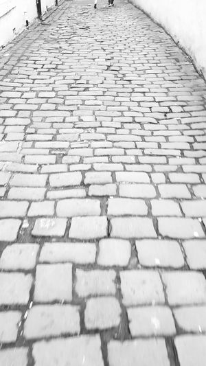 Outdoors Day Close-up No People Nature Cobblestone Cobblestone Streets PhonePhotography