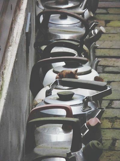 Myhometown Leer (Ostfriesland) Anarchy Eyeemgallery EyeEm Check This Out Streetphotography EyeEm Gallery Showcase March Eye4photography  EyeemTeam Tadaa Community EyeEm Best Edits The Week Of Eyeem Openyourmind EyeEm Team Ihaveadream Taking Photos Have A Nice Day♥ EyeEm Masterclass Eyeemurban Eyeemphotography Ostfriesland Details Hello World