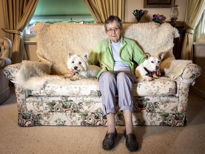 Dog Domestic Life Friendship Home Interior Living Room Looking At Camera Pets Portrait Senior Adult Sitting Sofa
