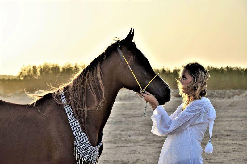 Alles eine reine Vertrauenssache Desert Horse Sky Domestic Livestock Pets Real People Women Outdoors