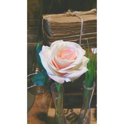 Redink Art Artistic Artisticphoto flower pink colorless cool nice cute beauty beautiful nature natural book vintage follow4follow followforfollow f4f F4F florist Contact: 93 337 88 58 Web: www.fflors.com