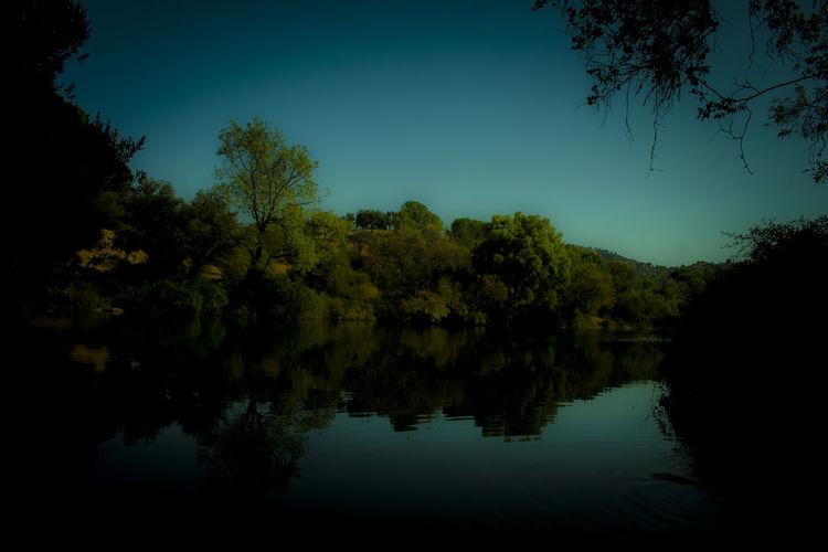 río Jándula, cerca del embalse del Encinarejo Andujar Andujar Beauty In Nature Jaen Province Jaen Provincia Nature Parque Natural Sierra De Andújar Río Jándula Scenics Sierra Morena Tranquil Scene Tranquility Tree
