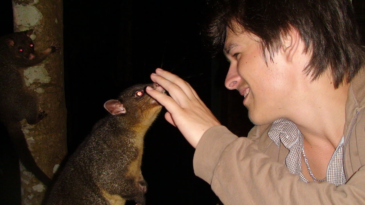 Smiling Young Man Touching Possum In Forest At Night