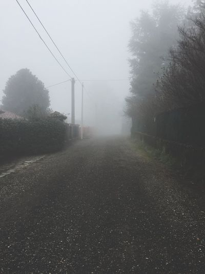 foggy day Foggy Day Foggy Weather Fog Weather Foggy The Way Forward Tree Mist No People Nature Winter Day Cold Temperature Road Outdoors Beauty In Nature Sky
