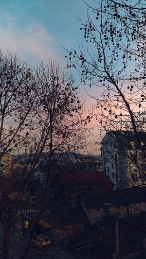 Kragujevac Serbia Serban Photos Serbianature Nature Serbian Photos Tree Day Outdoors First Eyeem Photo Window SkyKragujevac Sunset Dusk Tree Building Exterior Cloud - Sky Silhouette No People Nature Built Structure Beauty In Nature