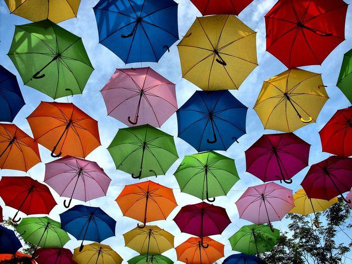 Umbrella Sky -