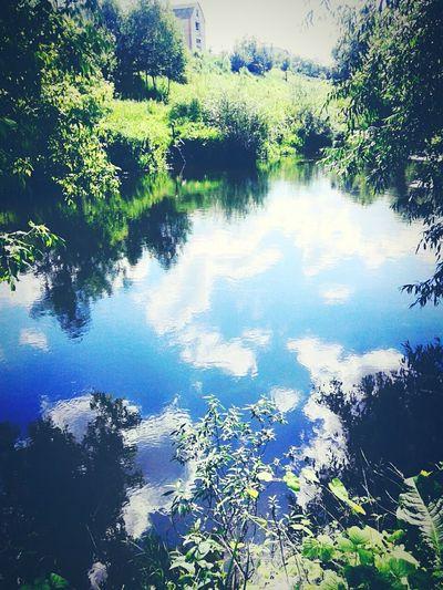 Nature Photography River Олександрія відпочинок