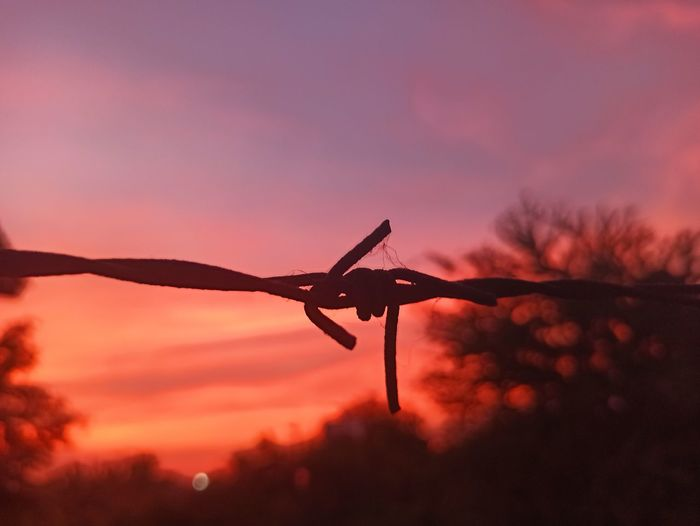 Low angle view of silhouette barbed wire against sky during sunset