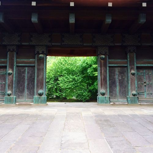 Ueno Park Green Early Summer Gate Edo Period