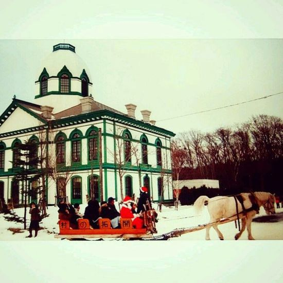 Part Of Hokkaido Open Air Museum Horse Drawn Carriage