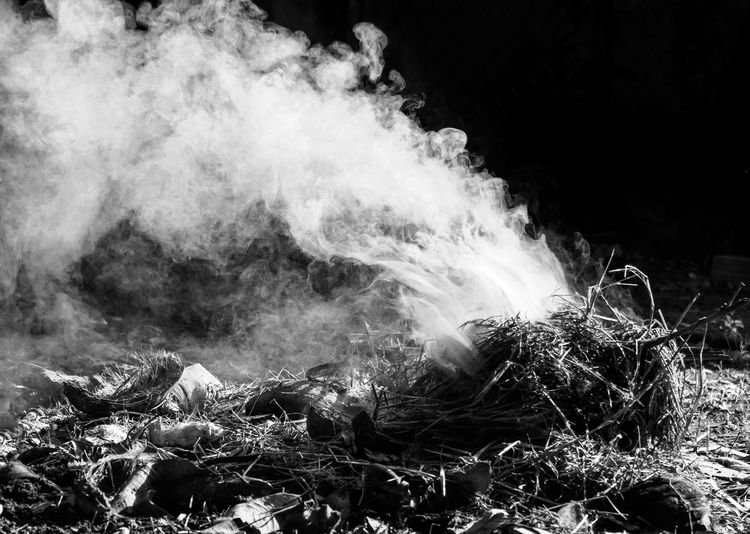 Close up of beautiful puff of smoke from the burning coconut coir in black and white Burning Dark Harmful Smoke Trash Vapor Beauty In Nature Black And White Blackandwhite Burn Close-up Coconut Coir Coconut Shells Coconut Skins Environment Garbage Motion Nature On Fire Outdoors Pollution Recycle Shadow
