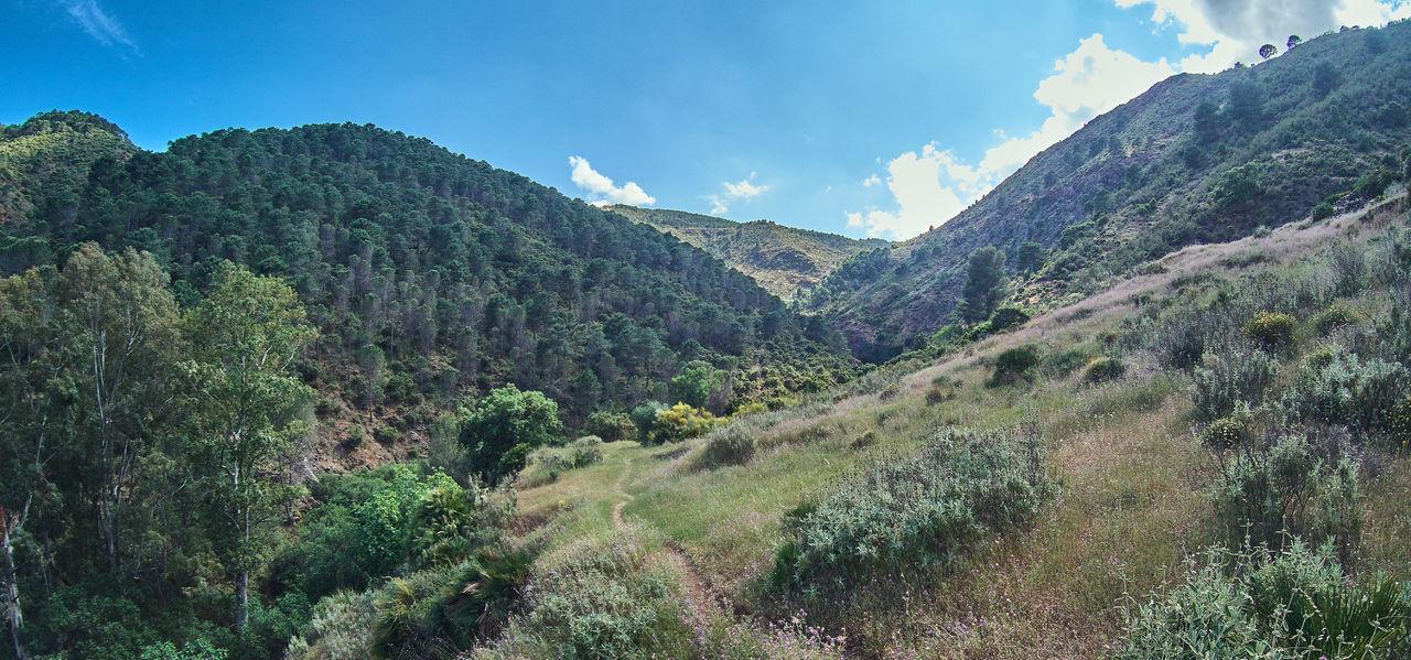 Malaga Parque Nacional Sierra De Las Nieves Balneario De Tolox Cascada Charca De La Virgen Charco De La Virgen Río Caballos Serrania De Ronda Tolox
