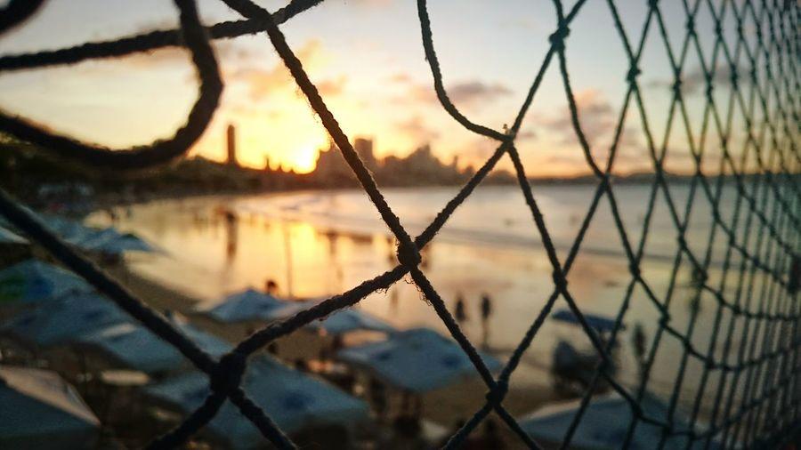 Beach seen through fence at sunset