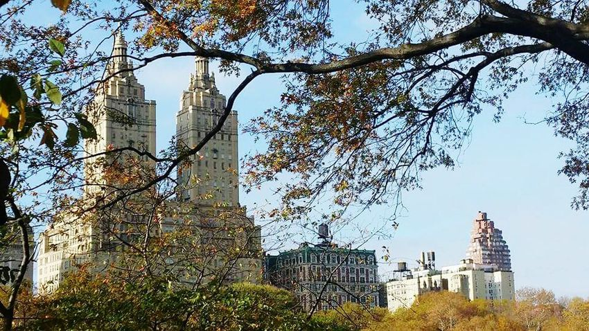 Central Park NY, Ny, New York, The big Apple, Autumn Colours, Central park Autumn, Trees, view through the trees , famous film locations, Ghostbusters buildings, Ghostbusters, Architecture Travel Destinations Famous Place Outdoors Beautiful Garden Beautiful Place Beautiful Nature NYCImpressions Filmlocation Beautiful Gardens , NY Must See , Peace In Chaos , Another World , 💜central Park Tranquil Scene Garden Traveldiaries NY scenes Old Buildings Architectural Feature